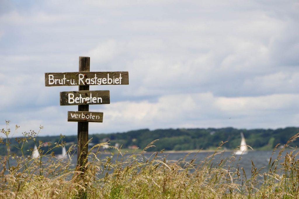 die Umgebung vom Landhaus Scholz -WHalbinsel Holnis
